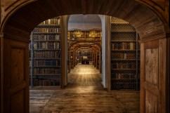 Blick in die Bilbliothek