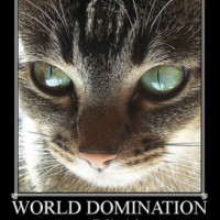 world-domination-200