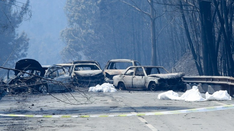 Burnt cars and body bags on the N236 road between Figueiro dos Vinhos and Castanheira de Pera, near Pedrogao Grande, central Portugal, 18 June 2017. At least fifty-seven people have been killed in forest fires in central Portugal, with many being trapped in their cars as flames swept over a road on the evening of 17 June 2017. A total of 688 firefighters are providing assistance. EPA/MIGUEL A. LOPES