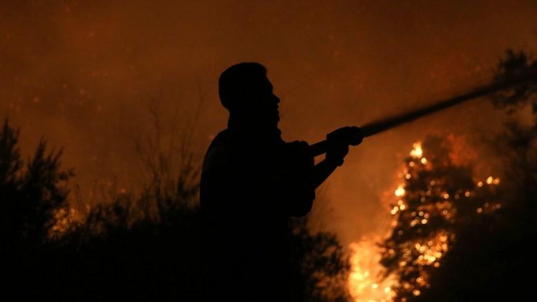 ΦΩΤΟΓΡΑΦΙΑ ΑΡΧΕΙΟΥ. Πυροσβέστες παλεύουν με τις φλόγες. ΑΠΕ-ΜΠΕ, ΟΡΕΣΤΗΣ ΠΑΝΑΓΙΩΤΟΥ