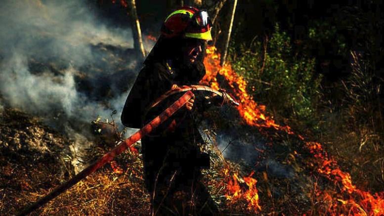 Μάχη με τη φωτιά δίνουν οι πυροσβέστες. Φωτογραφια ΑΡΧΕΙΟΥ, ΑΠΕ-ΜΠΕ