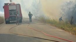 Πυροσβέστες επιχειρούν στην κατάσβεση της πυρκαγιάς στη Ζάκυνθο. ΑΠΕ-ΜΠΕ/ΚΩΣΤΑΣ ΣΥΝΕΤΟΣ