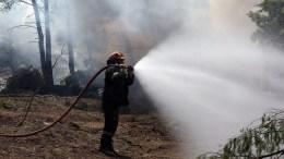 ΦΩΤΟΓΡΑΦΙΑ ΑΡΧΕΙΟΥ. Πυροσβέστες παλεύουν με τις φλόγες . ΑΠΕ-ΜΠΕ/ ΟΡΕΣΤΗΣ ΠΑΝΑΓΙΩΤΟΥ