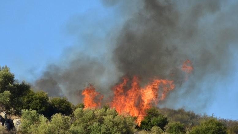 Φωτογραφία αρχείου από πυρκαγιά σε εξέλιξη.  AΠΕ-ΜΠΕ/ΜΠΟΥΓΙΩΤΗΣ ΕΥΑΓΓΕΛΟΣ.