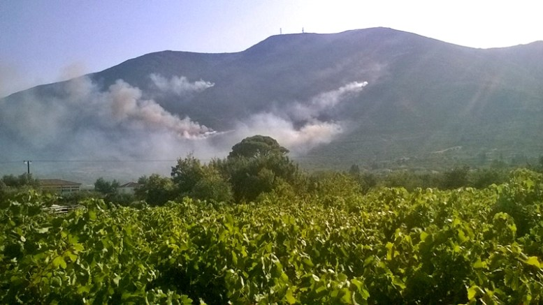 Σε πλήρη εξέλιξη είναι η πυρκαγιά στο Καταστάρι Ζακύνθου όπου μεταβαίνουν ενισχύσεις και από την υπόλοιπη Ελλάδα για την κατάσβεσή της. Φωτογραφία: www.imerazante.gr.