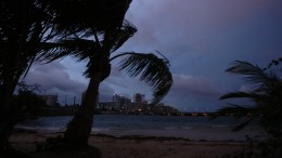 FILE PHOTO. A view of palm trees blowing in the wind in San Juan, Puerto Rico, 19 September 2017. Governor of Puerto Rico Ricardo Rossello reiterated hours after the arrival of Hurricane Maria that the Caribbean island is facing an 'imminent danger' and that their fate is 'in the hands of God. EPA/THAIS LLORCA
