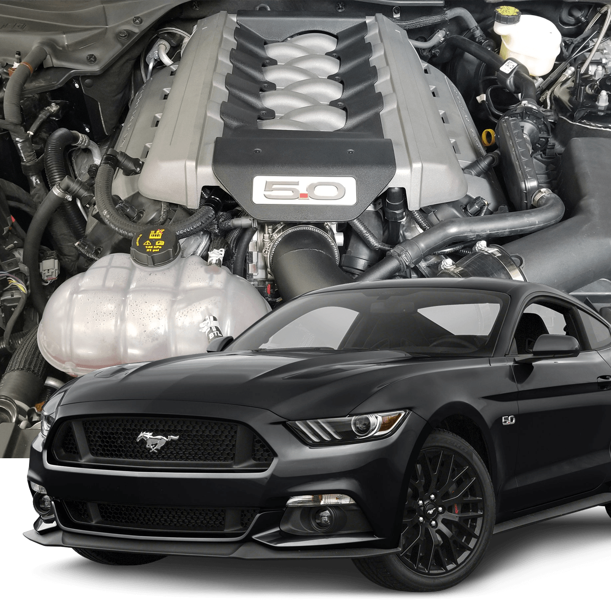 2015 Mustang Gt Pictures Hellion 2015 2017 Ford Mustang Gt Street Sleeper Hidden Twin Turbo System