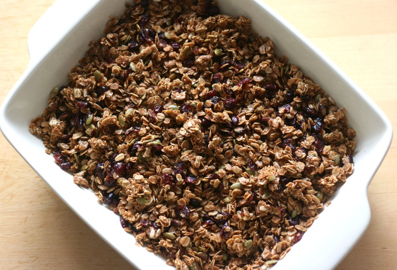 Cranberry Pumpkin Seed Granola Recipe with Hemp Hearts, Sunflower