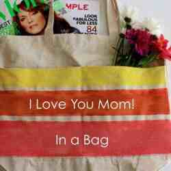 "DIY ""I Love You Mom"" in a Bag"