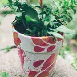 FAVES: 7 Pretty DIY Planters to Get You Ready to Garden