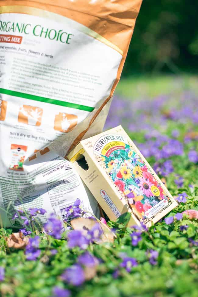 DIY Wildflower Seed Bombs | HelloGlow.co