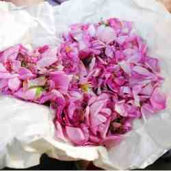 13 Beautiful Uses for Rosewater