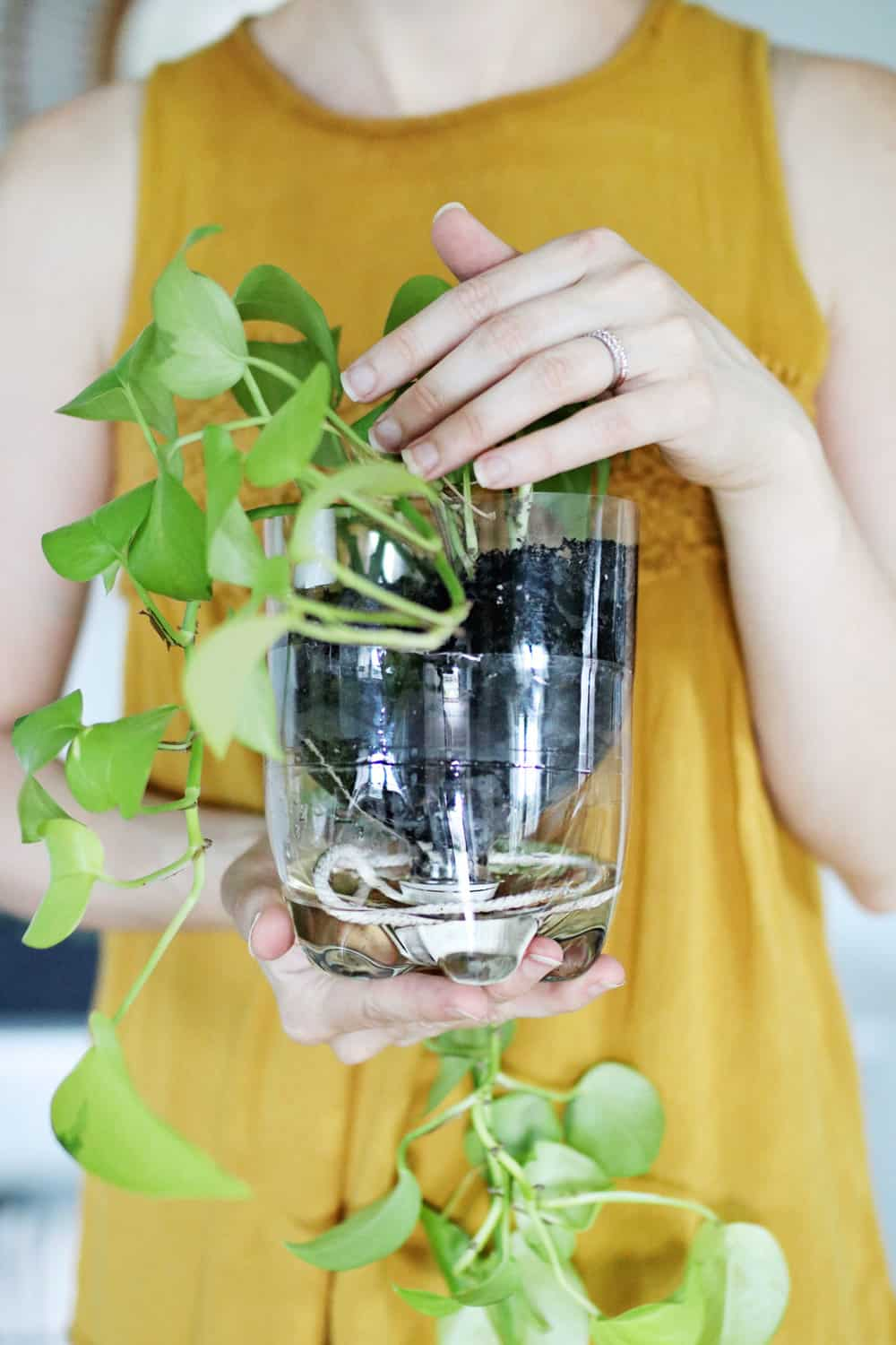 Make Self Watering Planters 3 Self Watering Planter Hacks You Have To Try Hello Glow