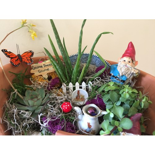 Medium Crop Of Miniature Garden Gnomes