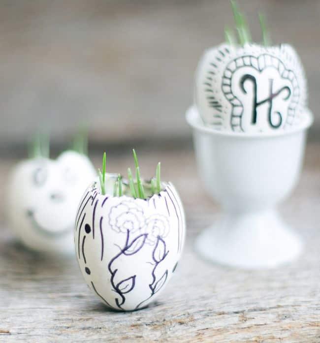 DIY Eggshell Garden | HelloNatural.co