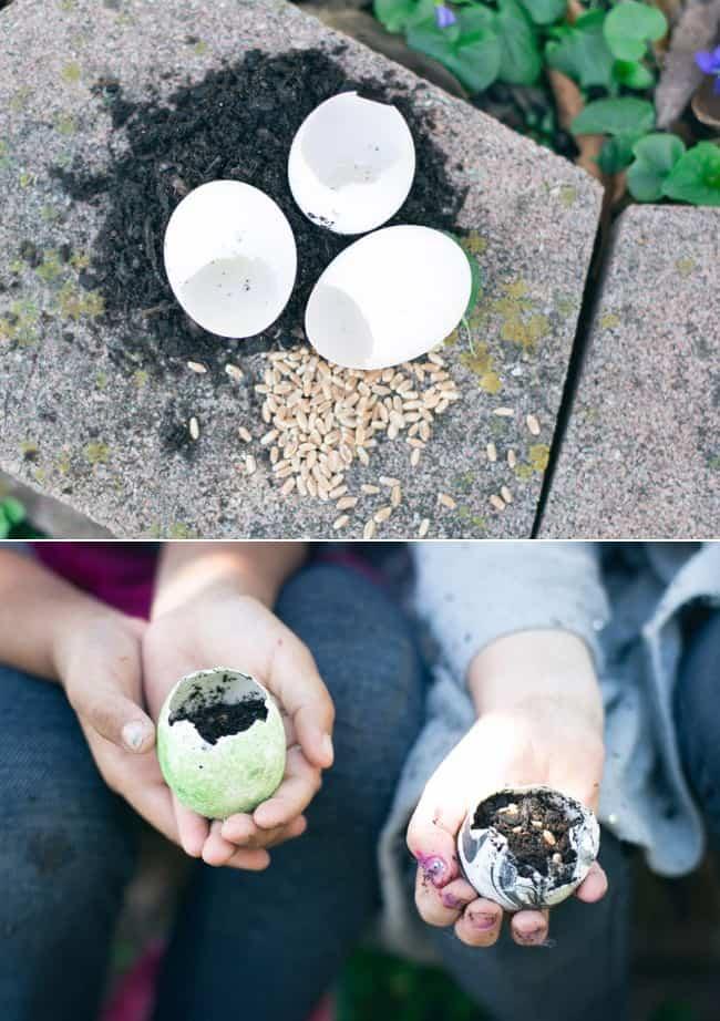 Eggshell Garden | HelloNatural.co