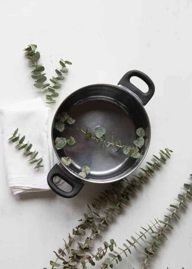 Natural Remedy Get Well Kit + DIY Eucalyptus Steam | HelloNatural.co