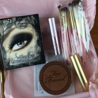 Too Faced Beauty 2014 Cyber Monday Mystery Box Mini Review