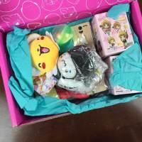 Doki Doki February 2016 Subscription Box Review