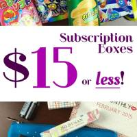 20 Subscription Boxes $15 and Under - Every Month!