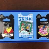 Disney Park Pack May 2016 Subscription Box Review - Pin Trading Edition