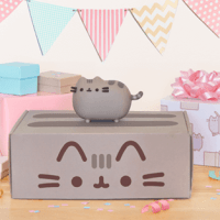 Pusheen Box Summer 2016 Box FULL Spoilers!