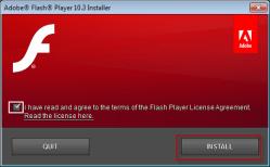 ... _3r183_11_winax.exe para instalar la versión 10 de Flash Player