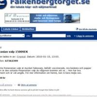 Bedrägeriförsök på FalkenbergTorget.se...