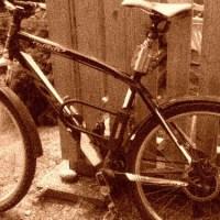 Cykelsemester 2016 - Cykelkärra eller inte!!??