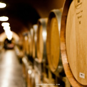 A Wine Tasting Tour in Sonoma
