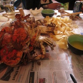 Seasonal Eating: Maryland Blue Crabs!
