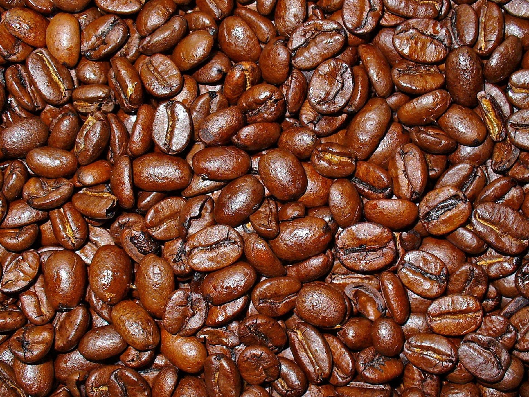 Coffee Arabica Benefits Coffea Arabica Herbology Manchester