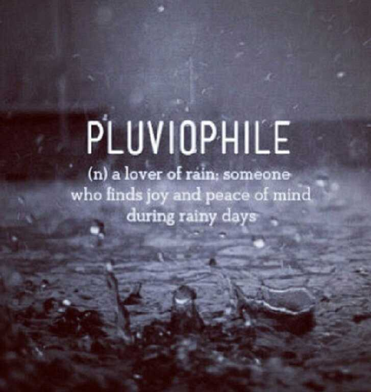 Funny Fall Wallpaper Pluviophile Here Lies My Despair