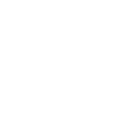 messnerpoint_logo_white