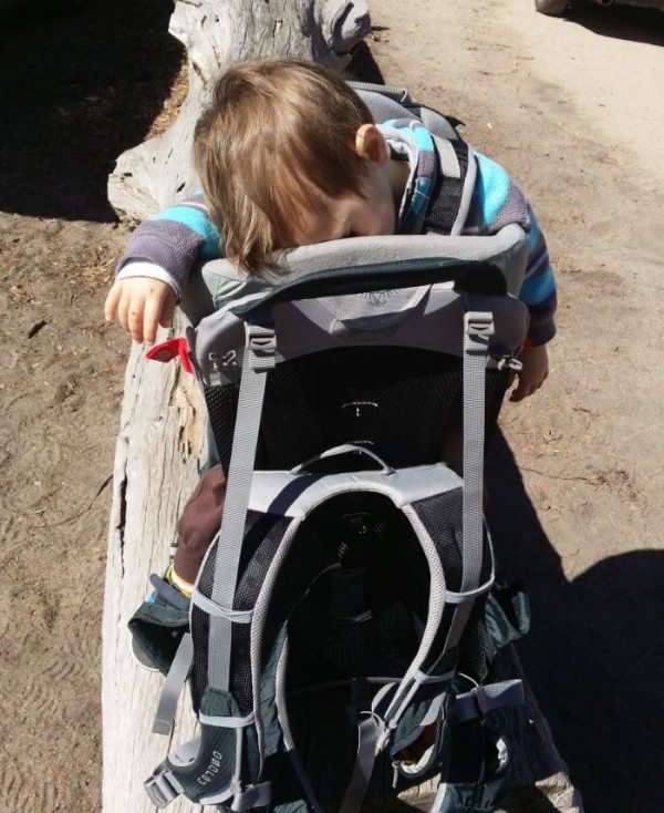 Baby Stroller Bag Travels With Baby The Osprey Poco Premium Backpack