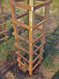 Gardening Tips ~ DIY Tomato Cages  Her View From Home