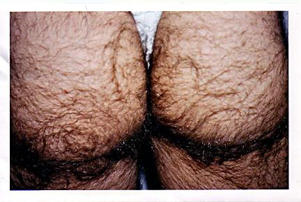 guys hairy butthole