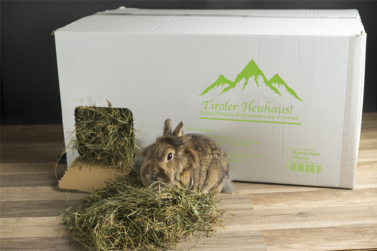 Container Haus Aus österreich The Hay House For Rabbits And Guinea Pigs