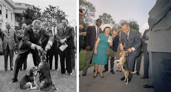 LBJ-dogs-Him-Her-DC