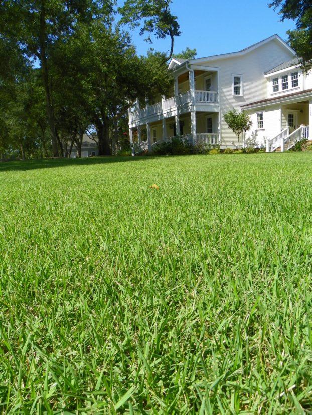 Landscaping Over Septic Drain Fields Home  Garden Information Center