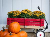 Get Inspired for Fall With These Outdoor Decorating Ideas