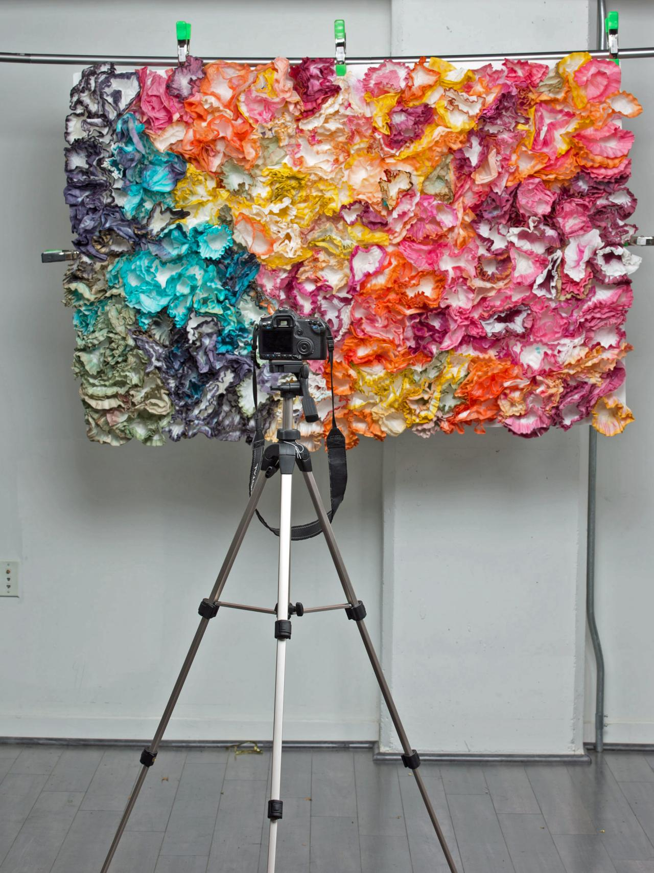 How To Set Up A Diy Photo Booth With Props And Backdrop Hgtv