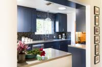 Blue Midcentury Modern Kitchen Photos