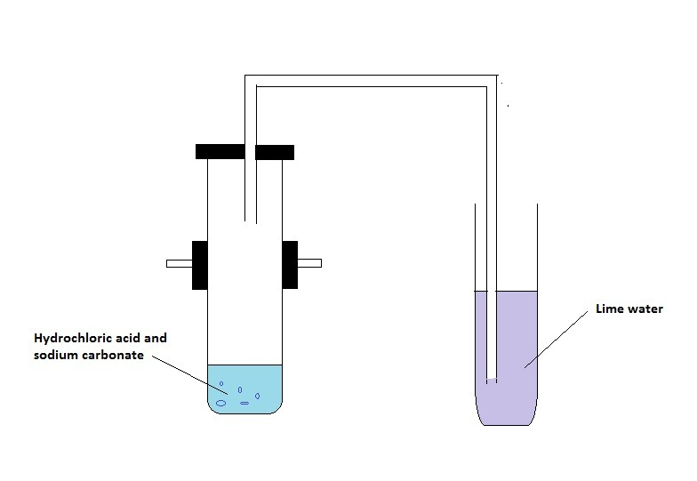 45Describe an activity with diagram to illustrate that the reaction
