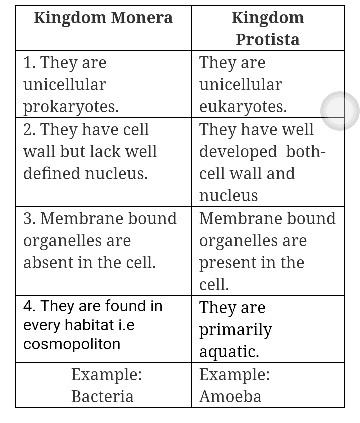 diffrentiate between monera and protista in a tabular form - Brainlyin
