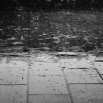 隅田川花火大会は雨だと中止?延期?公式発表はいつ?