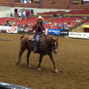 stacy westfall horse