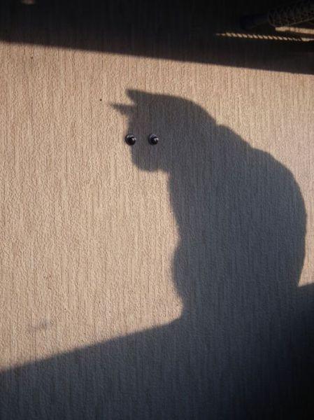 arte com sombras