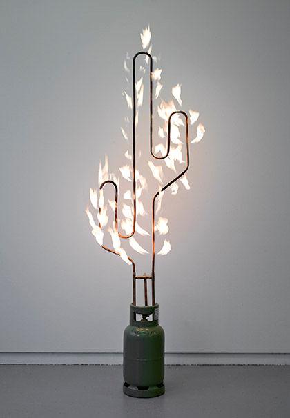 Marc Bijl  Burning Cactus