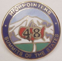 48 State Enameled Pin
